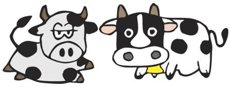 Hai due 2 mucche