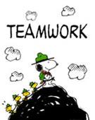 Team squadra linus